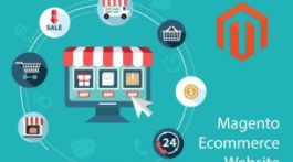 Magento Ecommerce Website
